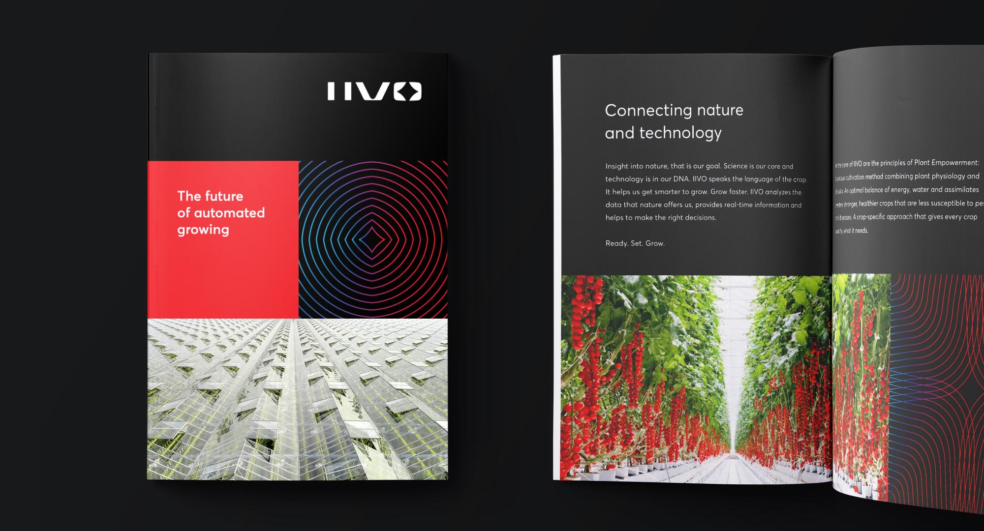 IIVO brand identity